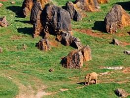Přírodní park Cabárceno na severu Španělska, kam Moja odcestuje v první
