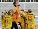 Hradecký brankář Jiří Lindr se tváří hodně zkroušeně. V pozadí oslavují gól