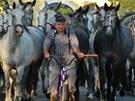 Soutěž o nejhezčí výlet: Kladruby nad Labem