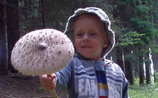 Na na�em rodinném houba�ení. Ná� syn �t�pánek poprvé na houbách a jeho první