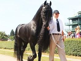 Vítěz ankety Nejkrásnější kůň České republiky 2011 Baron fan Odingastate