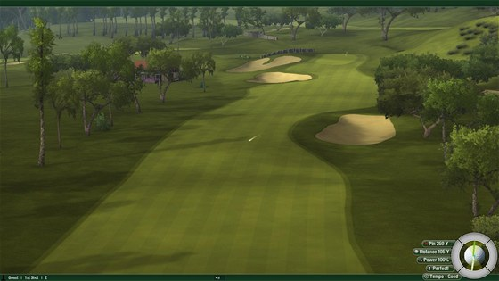 Tiger Woods PGA Tour 12 (PC)