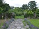Zahradní cesta lemovaná levandulí