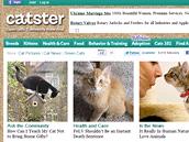 Kočičí sociální síť - catster.com