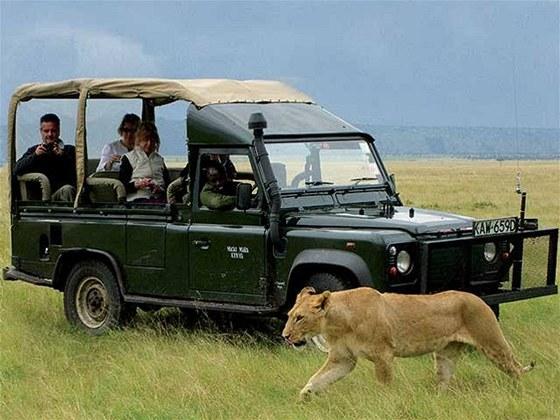Kdivokým predátorům se na safari dostanete téměř na dosah ruky.