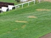 Skvrny na trávě na závodišti v Pardubicích