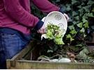 Polovina veškerého odpadu v domácnosti jsou kuchyňské zbytky, navíc kompost z