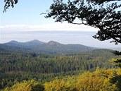 Lesní komplex západní části Lužických hor