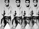 Andy Warhol: Osm Elvisů