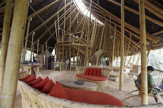 Bambusová horečka na Bali začala před šesti lety.