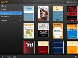 Knížky koupené na Amazon indle můžete číst i v tabletu nebo v počítači...