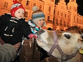 Slavnostní rozsvícení vánočního stromu na Pernštýnském náměstí v Pardubicích