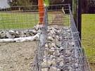Snadné vybudování gabionové zdi i pro domácího kutila. Nejdříve se postaví a