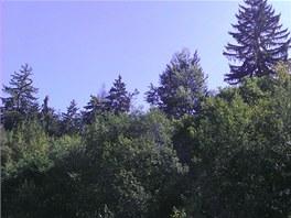 Fotka z HTC EVO 3D (les)