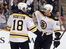 David Krej�� se raduje z g�lu se spoluhr��em z Bostonu Nathanem Hortonem.