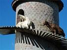 """""""Mé kozy svou věž milují. Lidem to ale musí připadat legrační,"""" řekl Charles"""