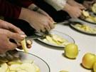 Degustace jablek v Hořicích na Jičínsku