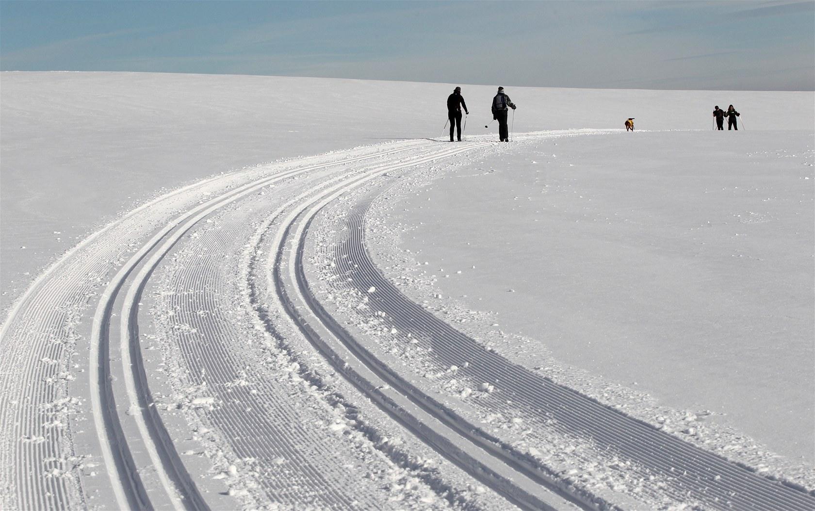 Běžecké stopy Tři Studně. Novoměstský okruh nabízí klasický zimní výlet na běžkách.