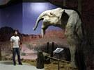 Interiéry libereckého Dinoparku