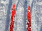 V perfektně vyfrézovaných lyžařských stopách areálu Bretterschachten