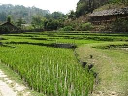 Chiang-Mai vesnice Karenu