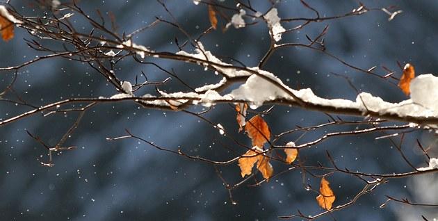 Zima, mráz, sníh. (ilustrační foto)