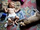 Kočky nemívají s miminy ani s malými dětmi problém, dokonce s nimi rády spí.
