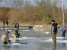 Lov na dírkách na rybníku Komora v Chlumci nad Cidlinou.