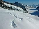 Kdo chce spatřit nejdelší alpský ledovec Aletsch, tekoucí odtud do Wallisu,