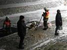 Hasiči s pomocí norné stěny zabraňují úniku nafty v potoce.