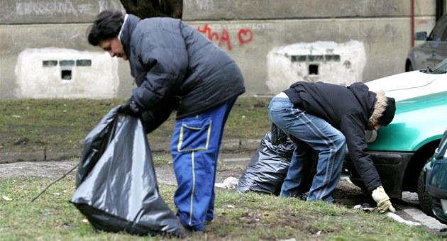 Dlouhodob� nezam�stnaní by m�li v rámci ve�ejné slu�by nap�íklad sbírat...