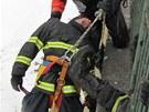 Profesionální hasiči v Hradci Králové si vyzkoušeli, jak zvládají náročnou...
