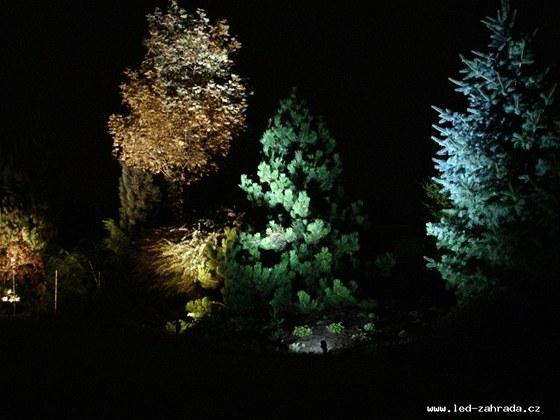 Nasvícení stromů a keřů v zahradě