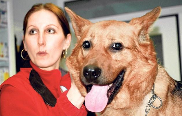 Zvěrolékařka Zuzana Maňková se psem Burtonem. Příští týden už bude Burton moci