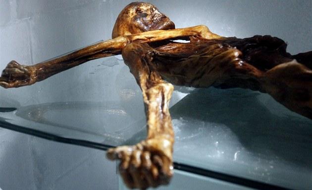 Mumie Ötziho je k vid�ní v muzeu v jihotyrolském Bolzanu.