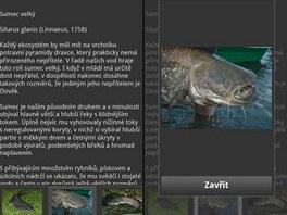Atlas ryb s fotogalerií