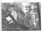 Trosky jugosl�vsk�ho letadla DC-9 po nehod� u Srbsk� Kamenice v roce 1972,