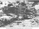 P��strojov� deska letadla DC-9 po nehod� u Srbsk� Kamenice v roce 1972.