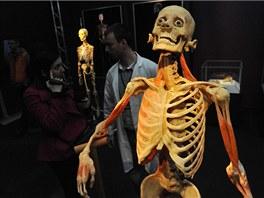 V Praze jsou opět k vidění kontroverzní sochy vzniklé z lidských těl.