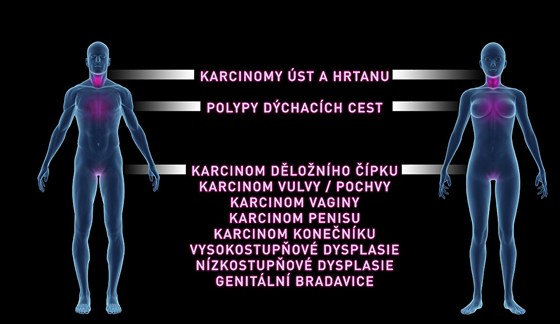 Kde HPV útočí