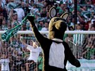 KLOKAN. K Bohemians 1905 pat neodmysliteln tak maskot.