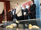 Tiskov� konference �MKOS po jedn�n� s tripartitou o zvy�ov�n� DPH, d�chodech a