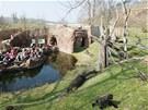 Venkovní výběh pražských goril odděluje od návštěvníků vodní příkop.