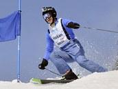 Dominik Ha�ek na trati ob��ho slalomu.
