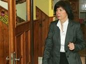 N�m�stkyn� ministryn� kultury Anna Matou�kov� p�ich�z� na setk�n� v salonku
