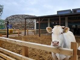 Chov zvířat na farmě není motivovaný ekonomickým ziskem, ale tvoří pouze