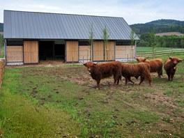Chov dobytka umožňuje návštěvníkům relaxovat vtěsné blízkosti domácích zvířat.