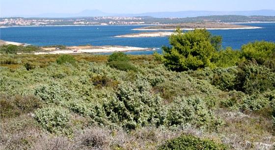 Z nízkého návrší v závěru Kamenjaku máme ostrůvky Medulinského zálivu jako na