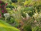 Nižší keře a trvalky zahradu vytvoří v zahradě nádhernou kulisu pro potěchu