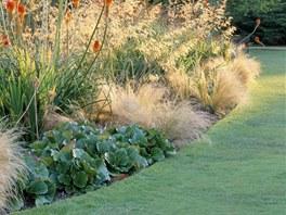 Nebojte se na zahradě ozdobných travin, mohou krásně lemovat křivku pozemku (na